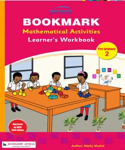 Mathematical Activities PP2 -Learners Book