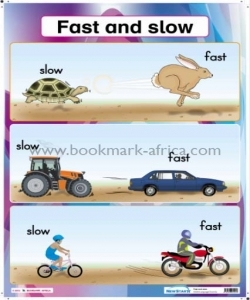 Fast and Slow/Big and Small - PP2